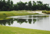 Dai Lai Star Golf & Country Club - Green